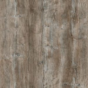 Ponderosa Pine (R55004 RU | R4531)