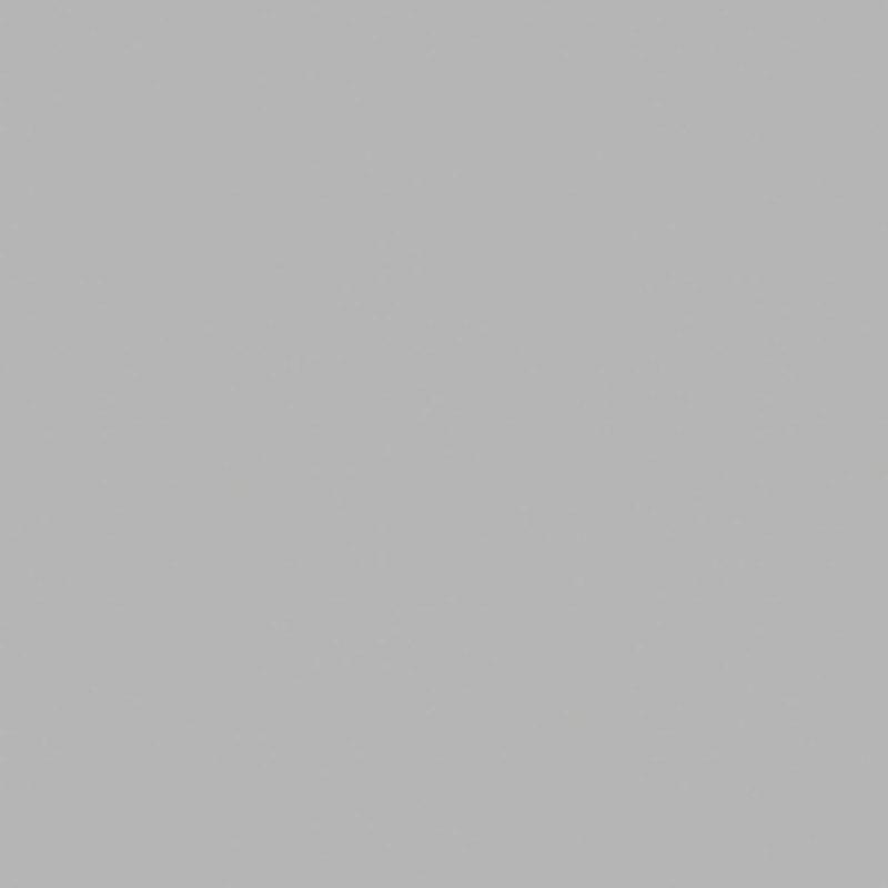 Grijs Antraciet (F70007 MP   F8595   RAL9022)