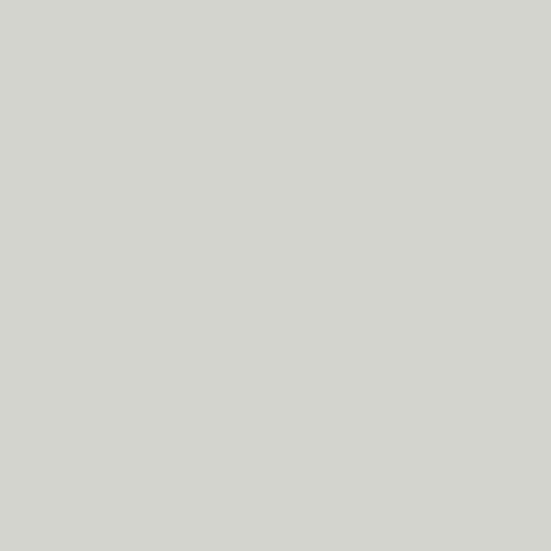 Zilvergrijs (U12131 MP | U1131 | RAL7047)