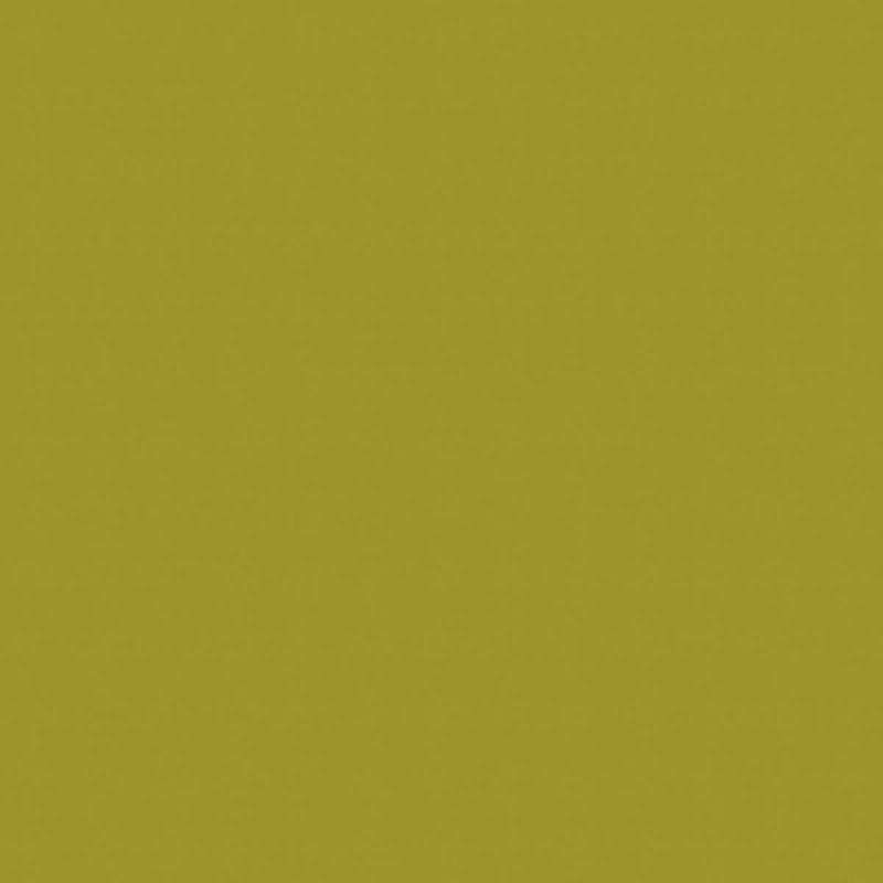 Iguana (U15110 MP | U110)