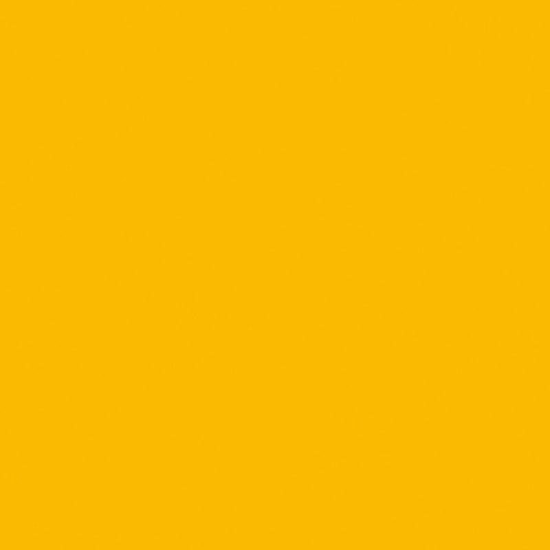 Eigeel (U15579 MP | U1579 | RAL1003)