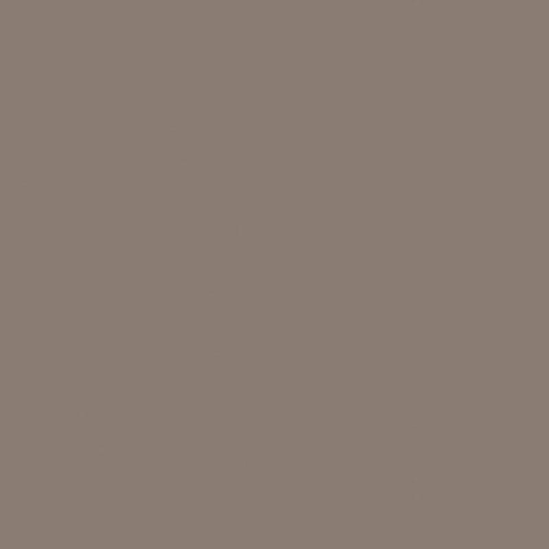 Truffelgrijs (U16000 VV | U1102)