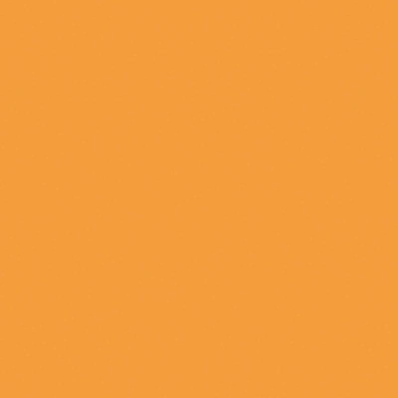 Sinaasappel (U16009 VV | U1665 | RAL1034)