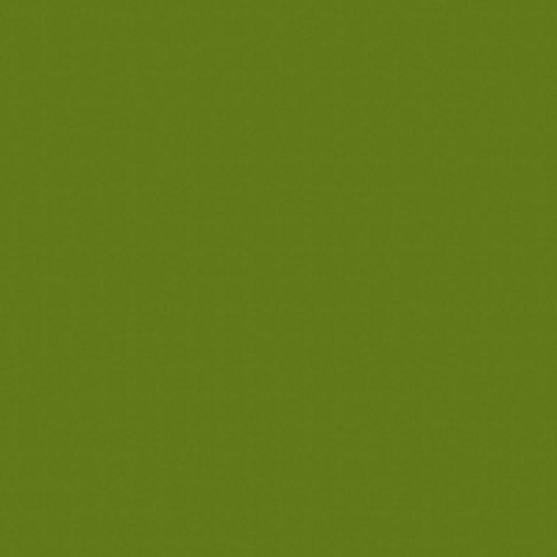 Limette (U19502 VV | U1878 | RAL6025)