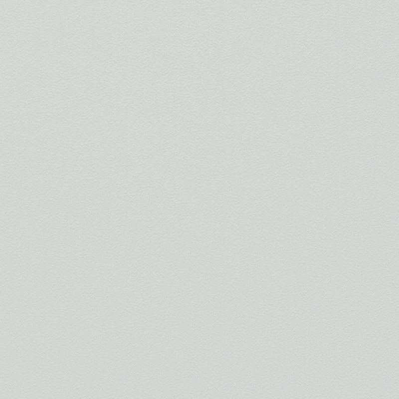 Lichtgrijs |Econ 1024|P3 E0 (Softmat) Kleurstaal