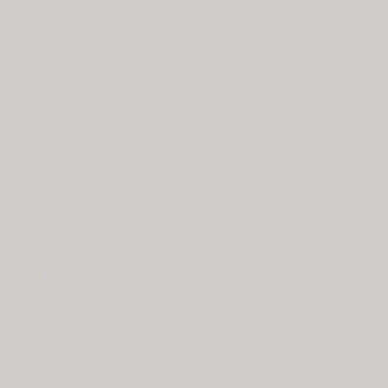 Lichtgrijs (U12188 SD | U1188 | RAL7035) Kleurstaal