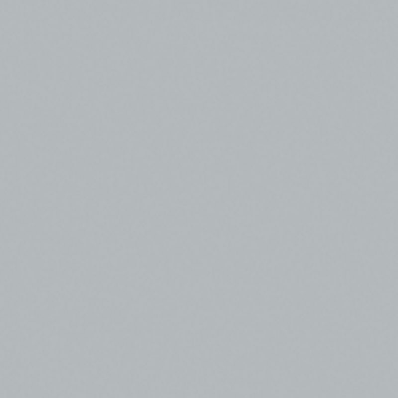 Zilvergrijs  |Pfleiderer U12009 | U009 Sandpearl (Sandpearl (SD)) Kleurstaal