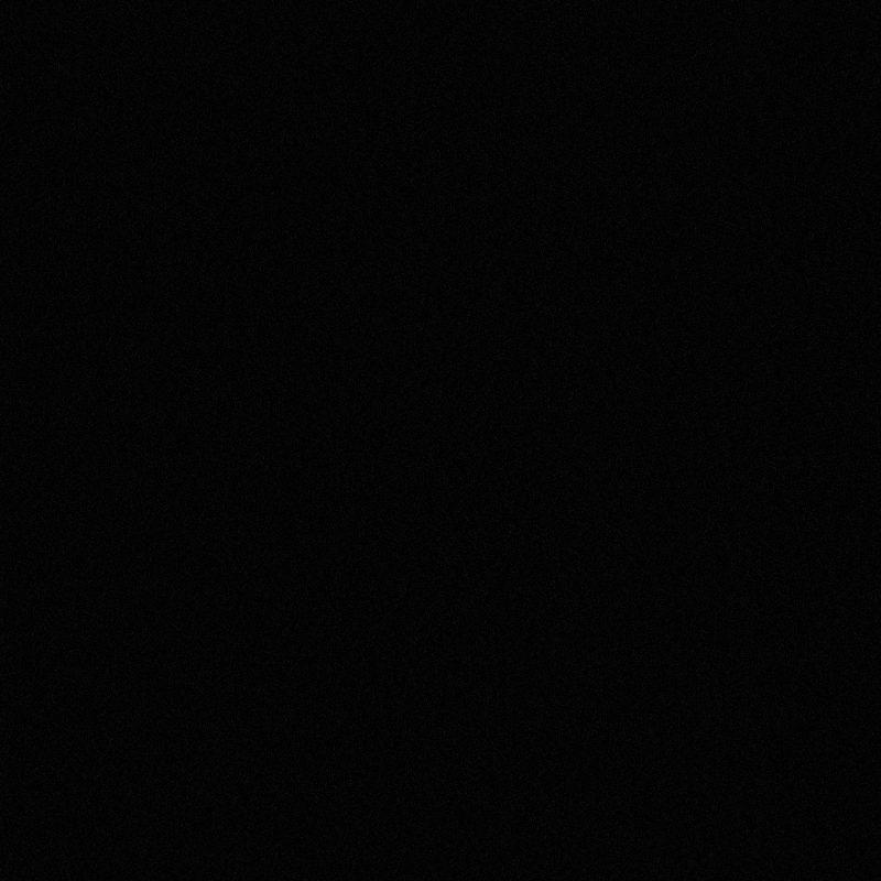 Zwart  Econ 1030 (Parel) Kleurstaal